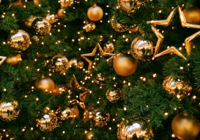 Кропивничан запрошують на ялинку та новорічний мюзикл