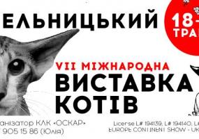 Виставка котів у Хмельницькому