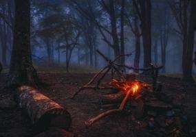 """Лісовий вишкіл """"Січовий байрак"""""""