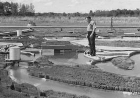 Виставка офортів з колекції ХОХМ Міцна вода. ЛЬВІВ - ХАРКІВ