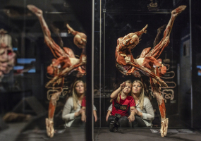 Всесвітньо відома виставка людських тіл у Києві