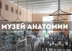 Экскурсия в музей анатомии человека