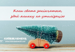 Пункти прийому Новорічний ялинок у Києві