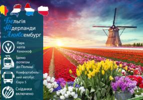 БеНіЛюкс! Свято квітів в Нідерландах. Їдемо потягом