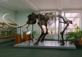 Віртуальні екскурсії у Вінницькому обласному краєзнавчому музеї