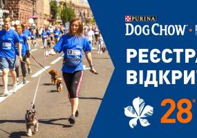 Пробіг із собакою у Києві