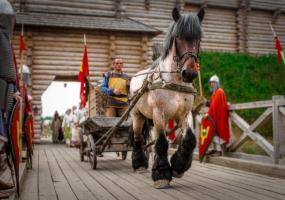 Зов героїв - Чемпіонат України з середньовічного бою