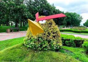 Angry Birds - Виставка квітів з нагоди Дня Києва