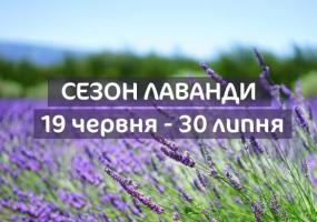 Вся афиша Киева - Сезон лаванди у Добропарку