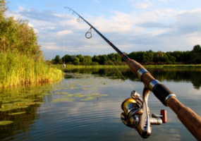 Кубок Вінницької області по ловлі хижої риби з берега