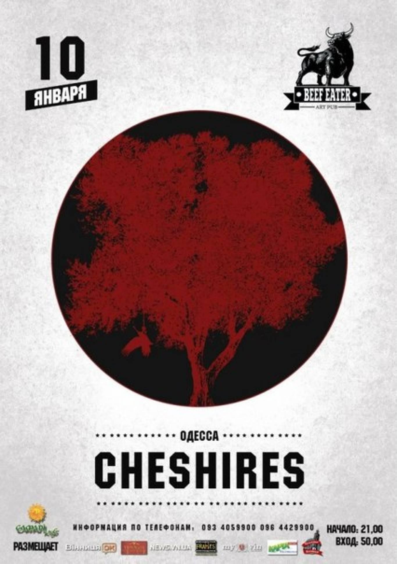 Гурт «Cheshires» з концертом у Віниці
