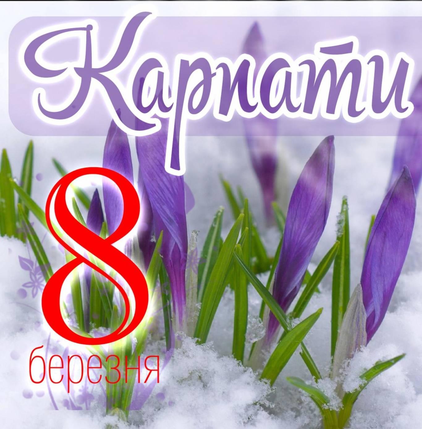 Святкуй 8 березня у Закарпатті