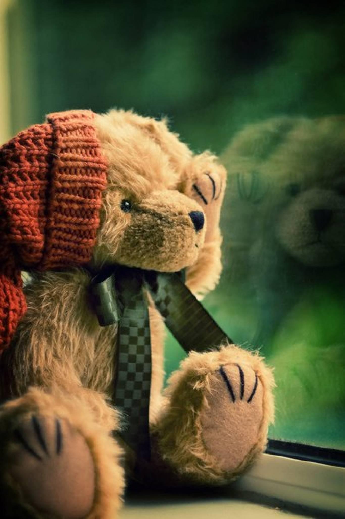 Тедді-пікнік на «ДАЧЕ»