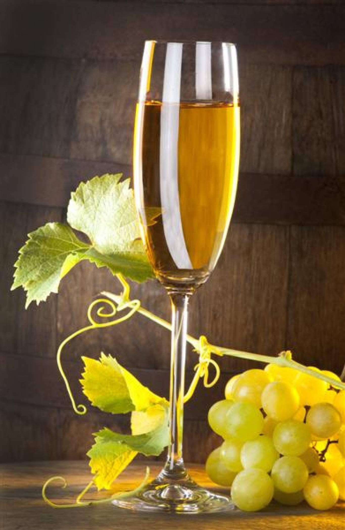 Дегустація вина в магазинах GOOD WINE