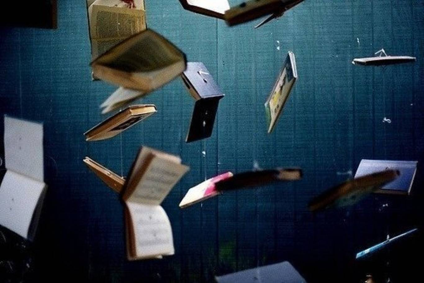 Літературна здибанка на Арт-пікніку
