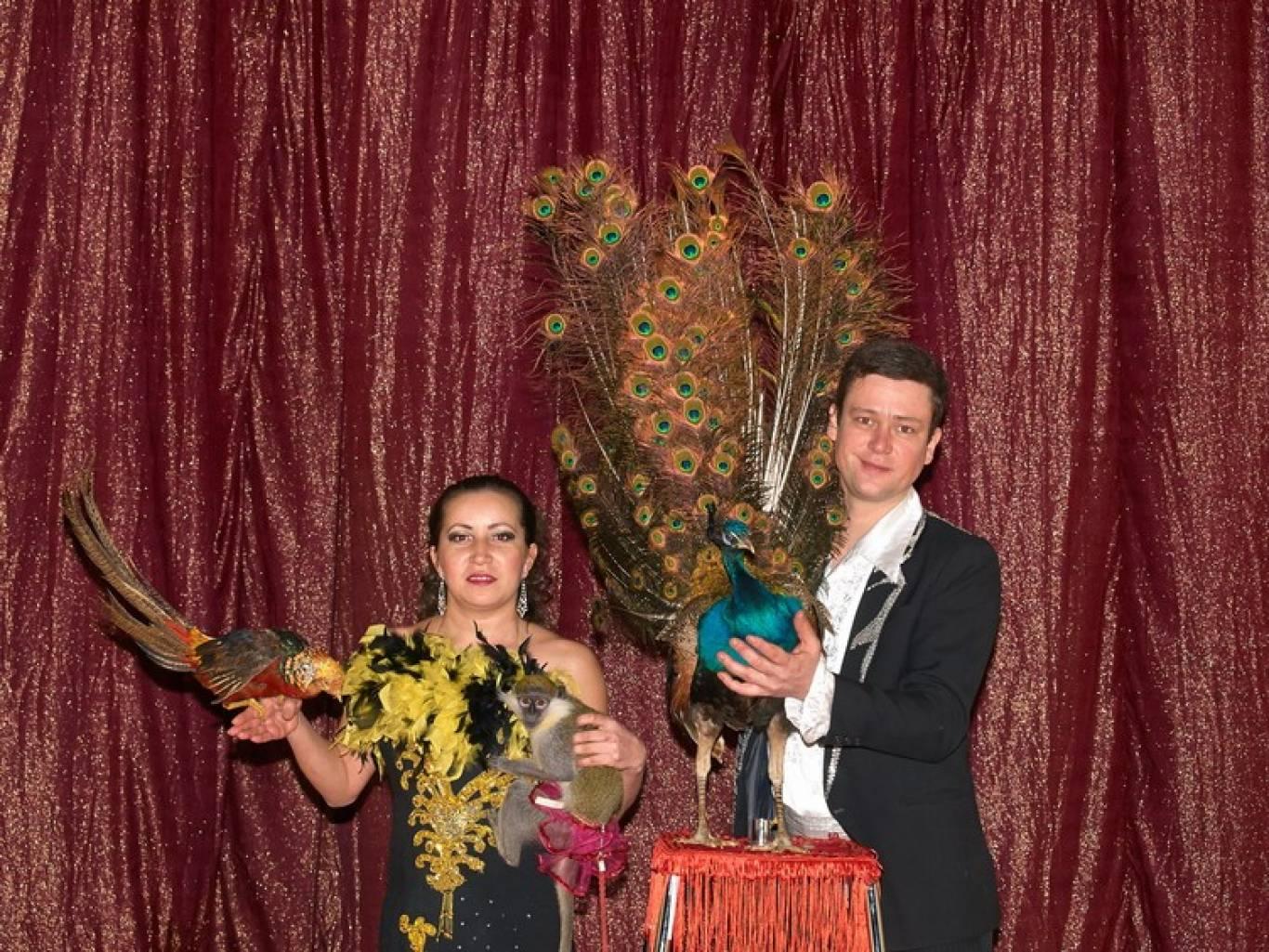 Великий цирк-шапіто «Вогні Києва»
