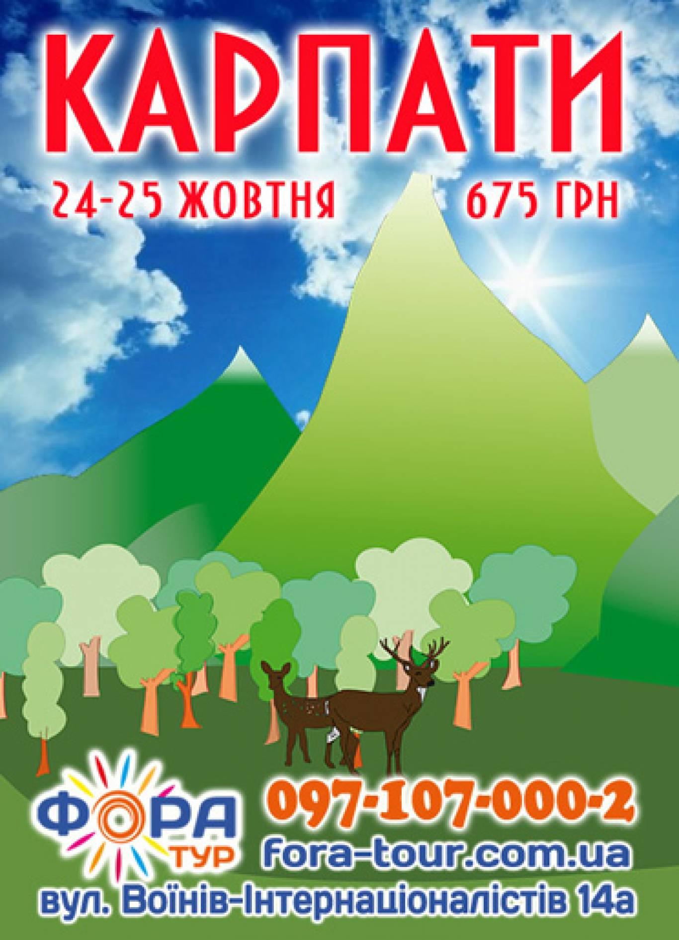 Поездка в Карпаты 24-25 октября