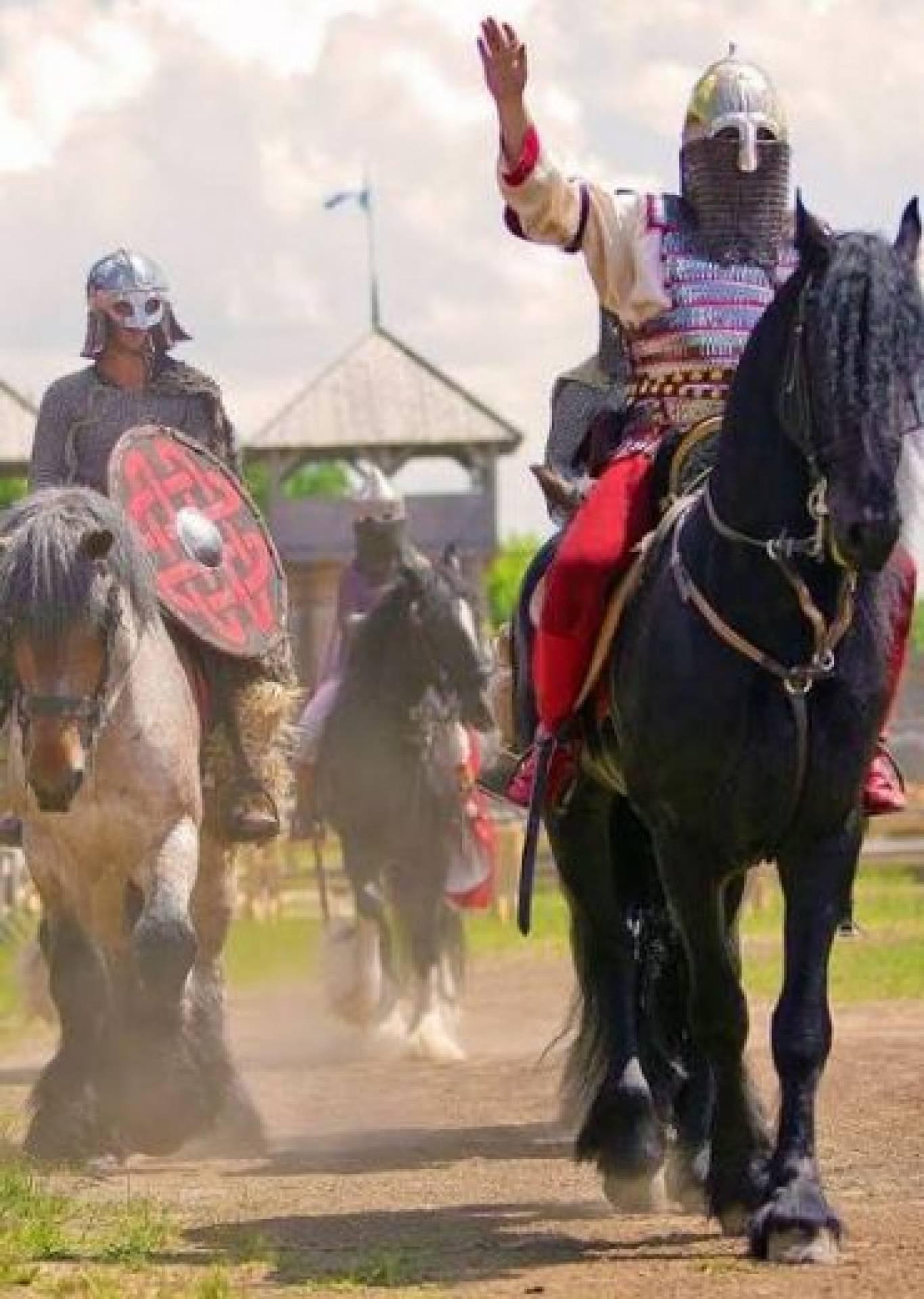 """Виставка-показ історичних порід коней """"Білогриві лошадки"""""""