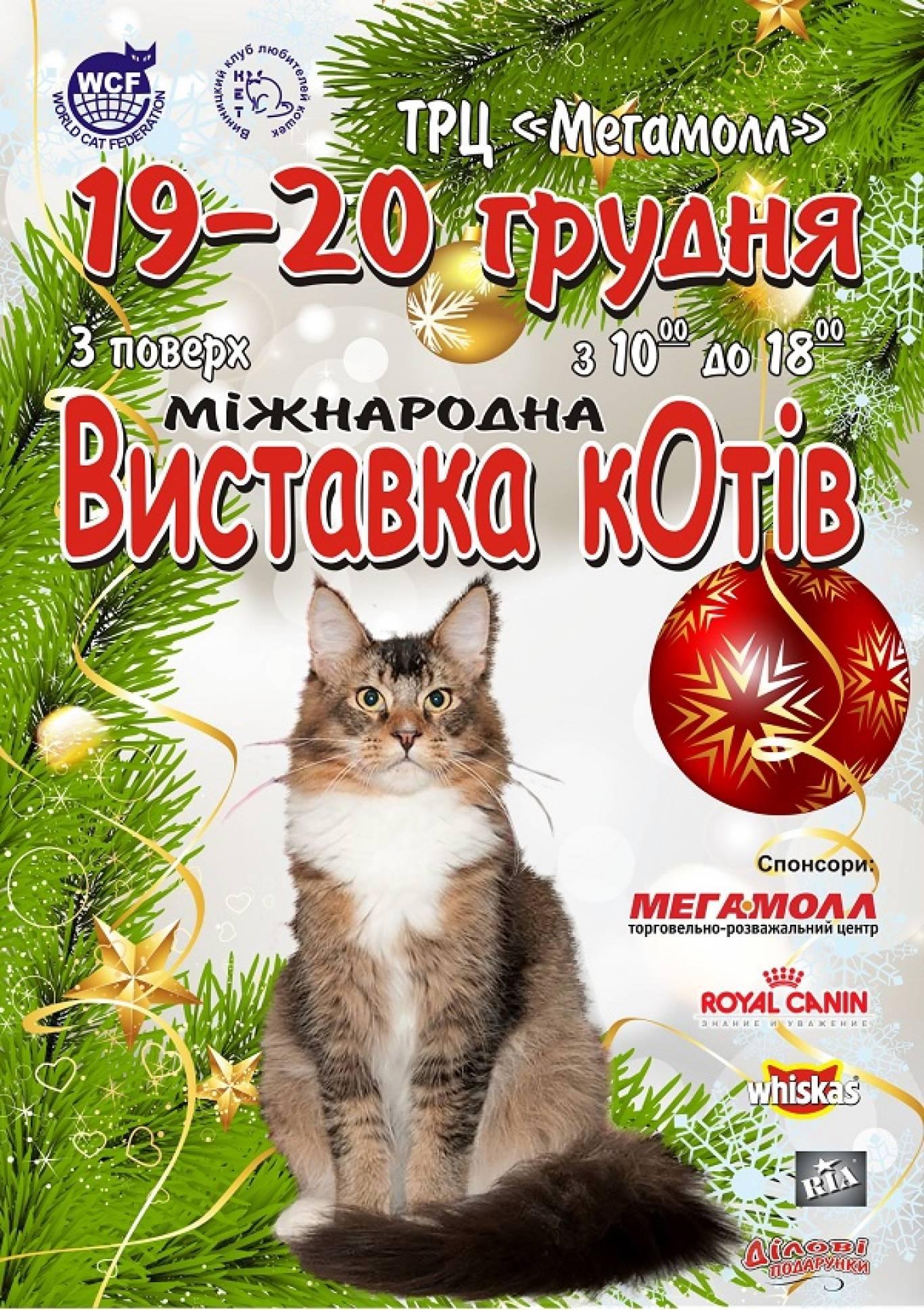 """Міжнародна виставка котів """"В кругу друзей на Николаев День"""""""