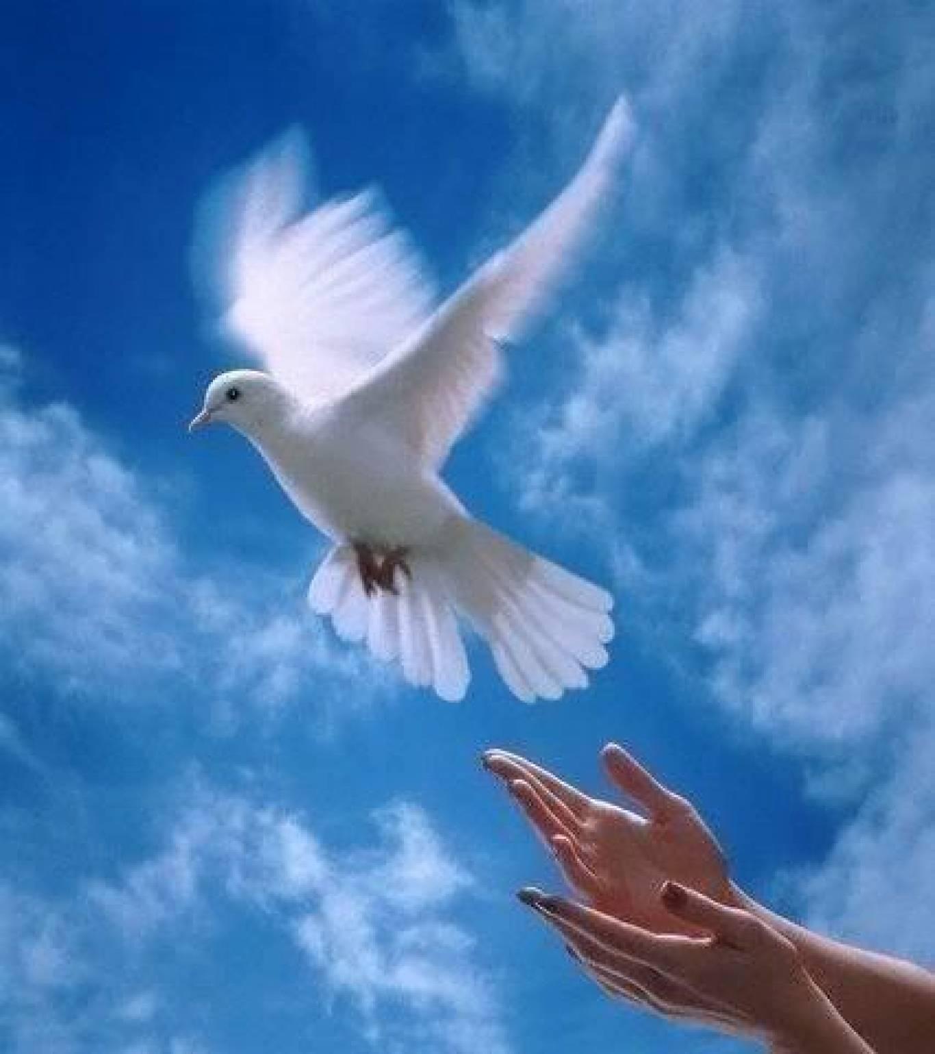 Марш миру на Хрещатику
