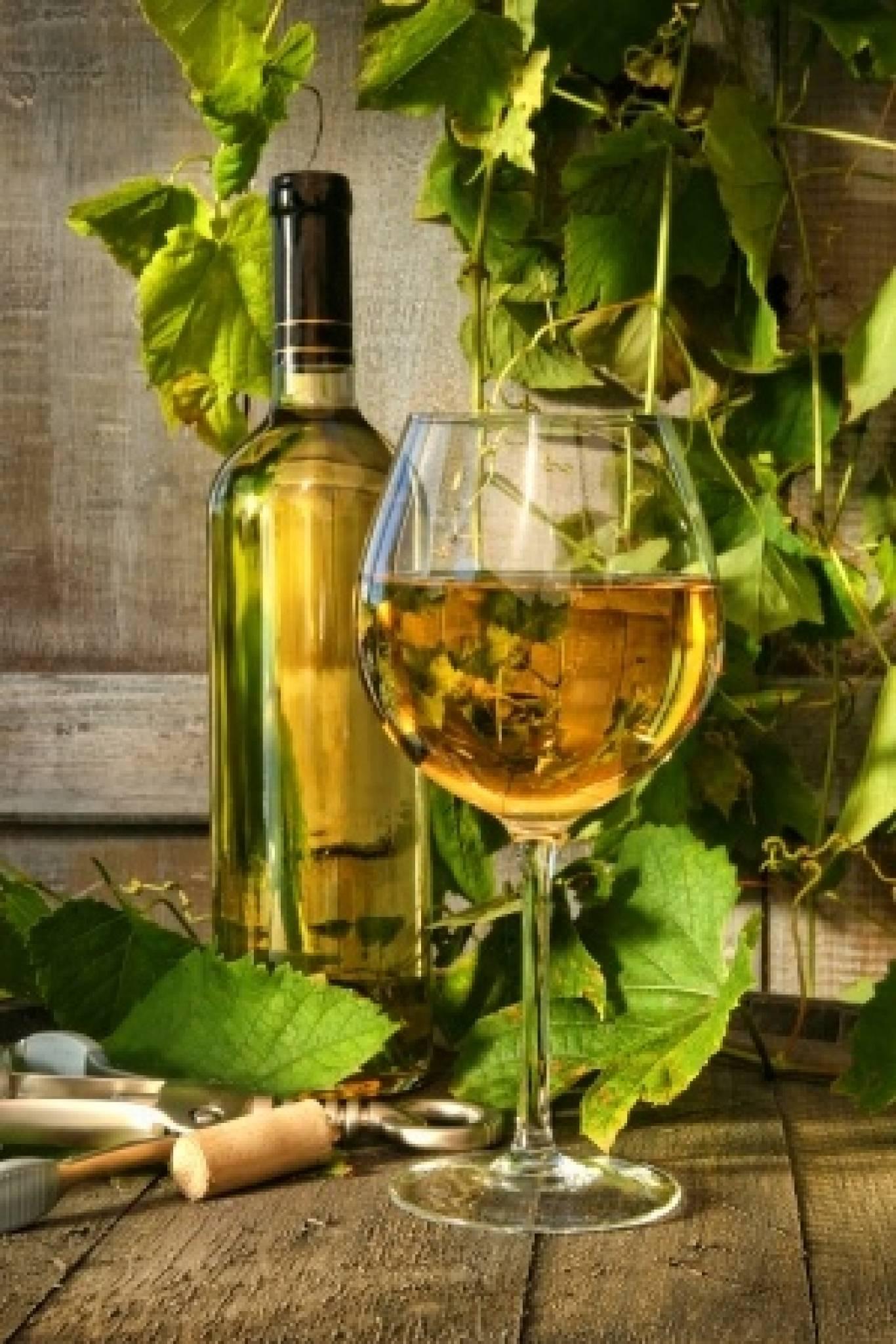 """Лекції-дегустації """"Білі вина Франції"""""""