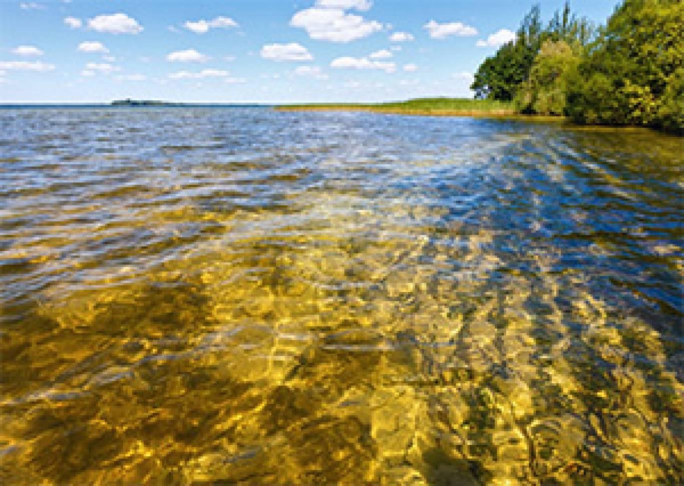 Волинь+Шацькі озера на  День незалежності!