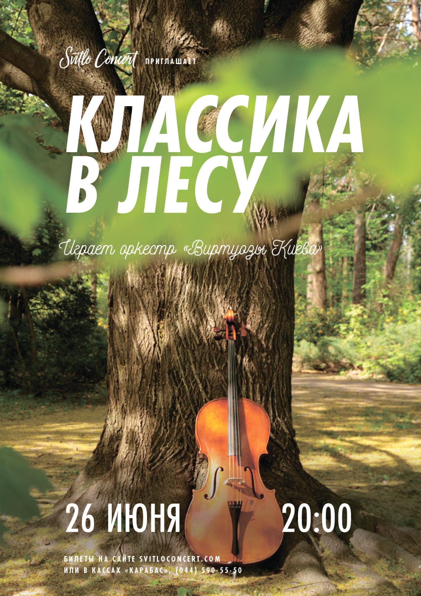 """Концерт """"Класика в лісі"""""""
