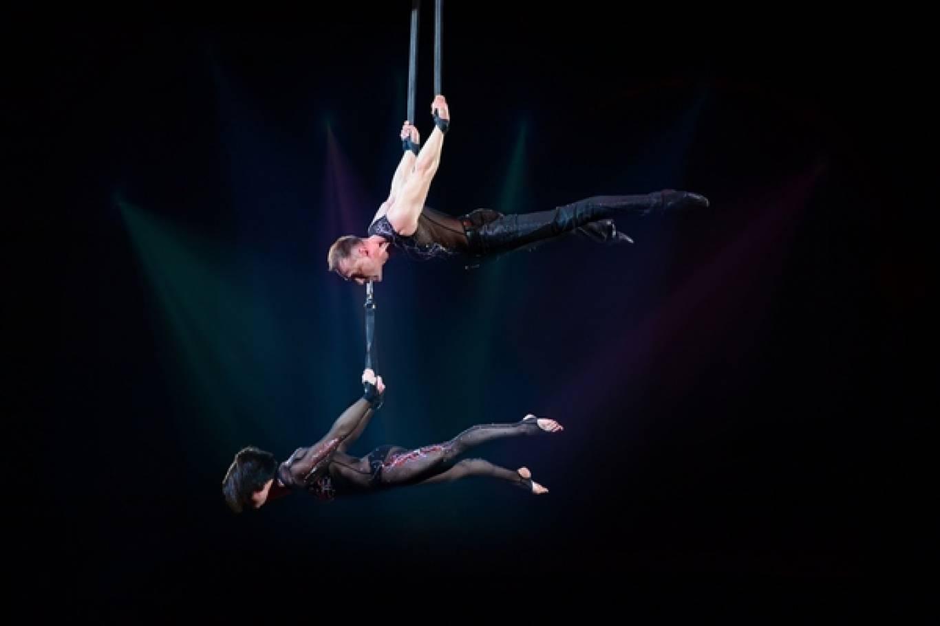Цирк з новою шоу-програмою у Вінниці