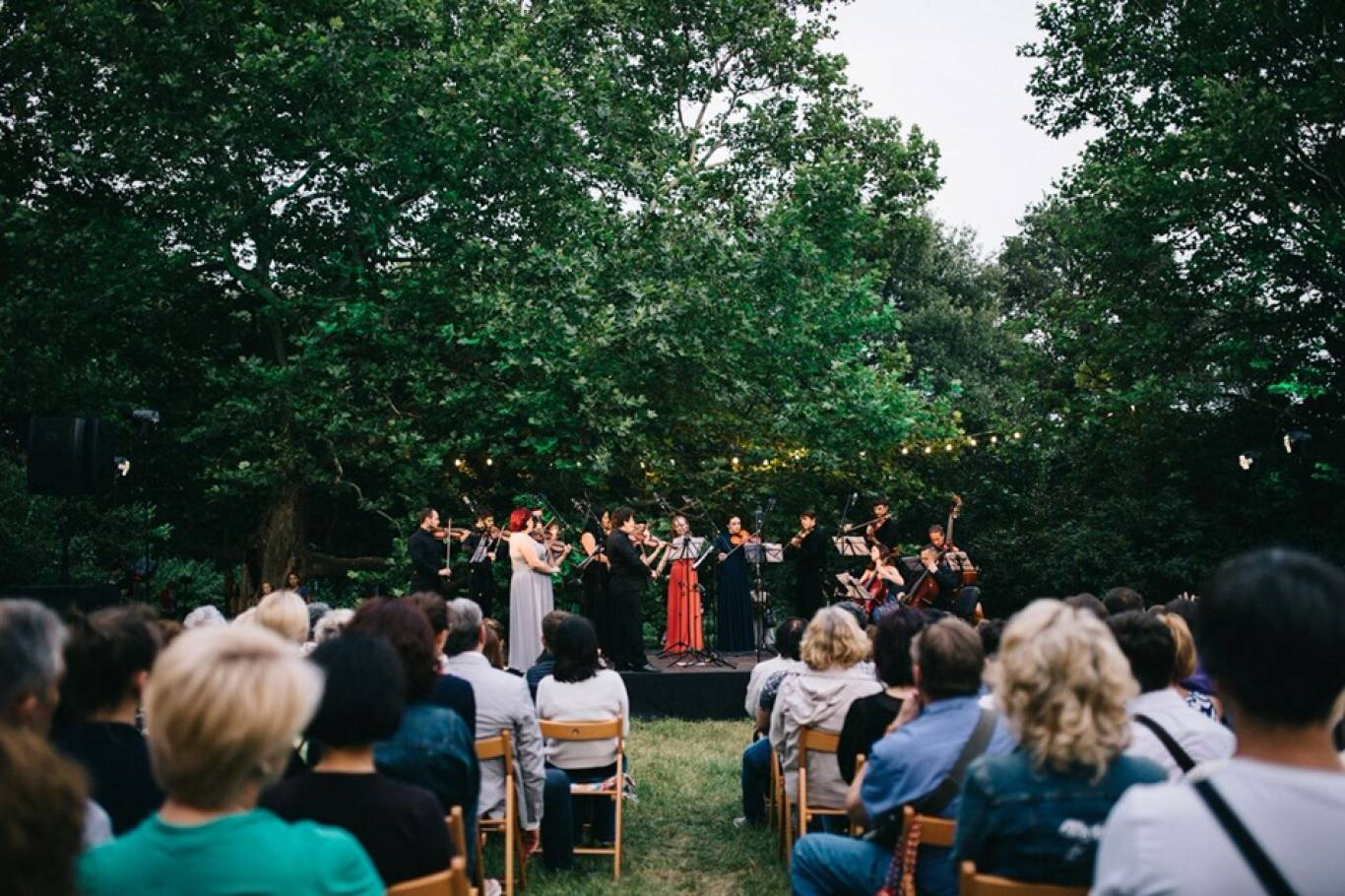 Вечір класичної музики в ботанічному саду: концерт на біс