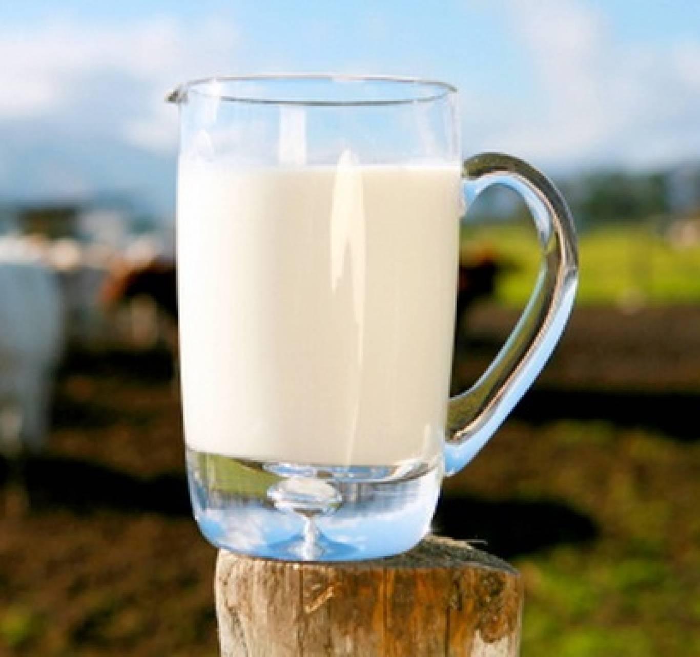 День молока на Співочому полі 2016