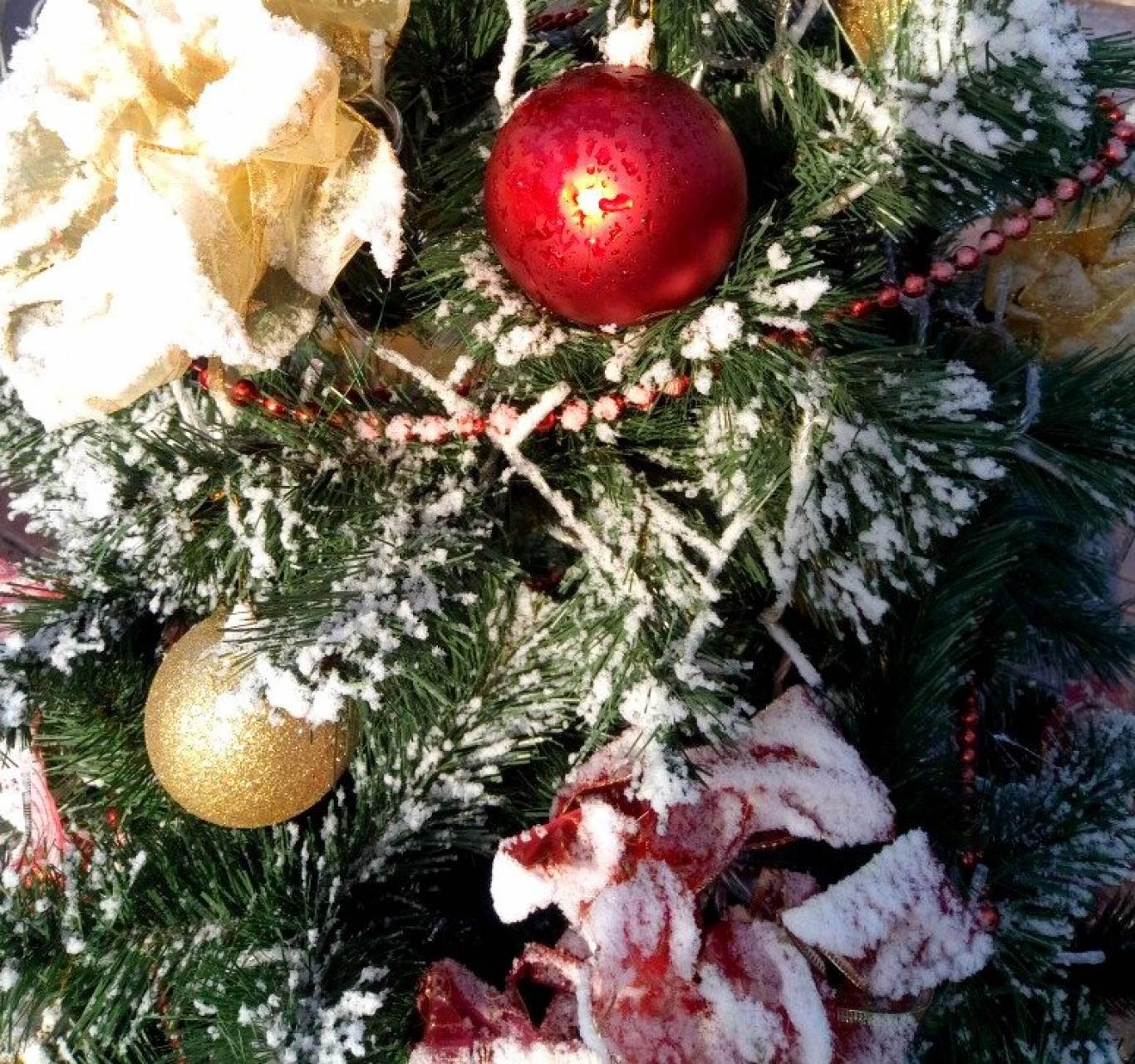 Нове Різдво на Хрещатику