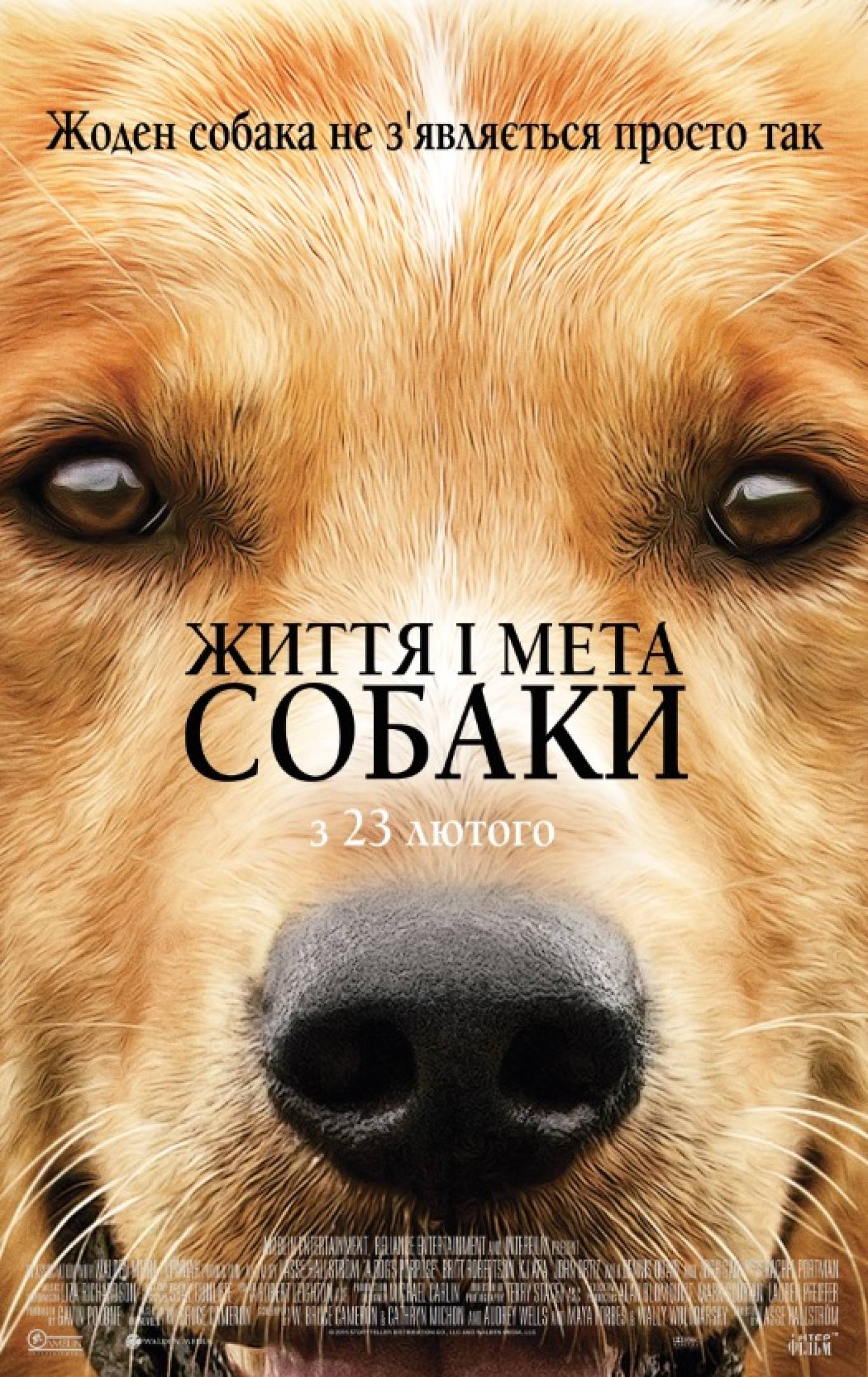Життя та ціль собаки