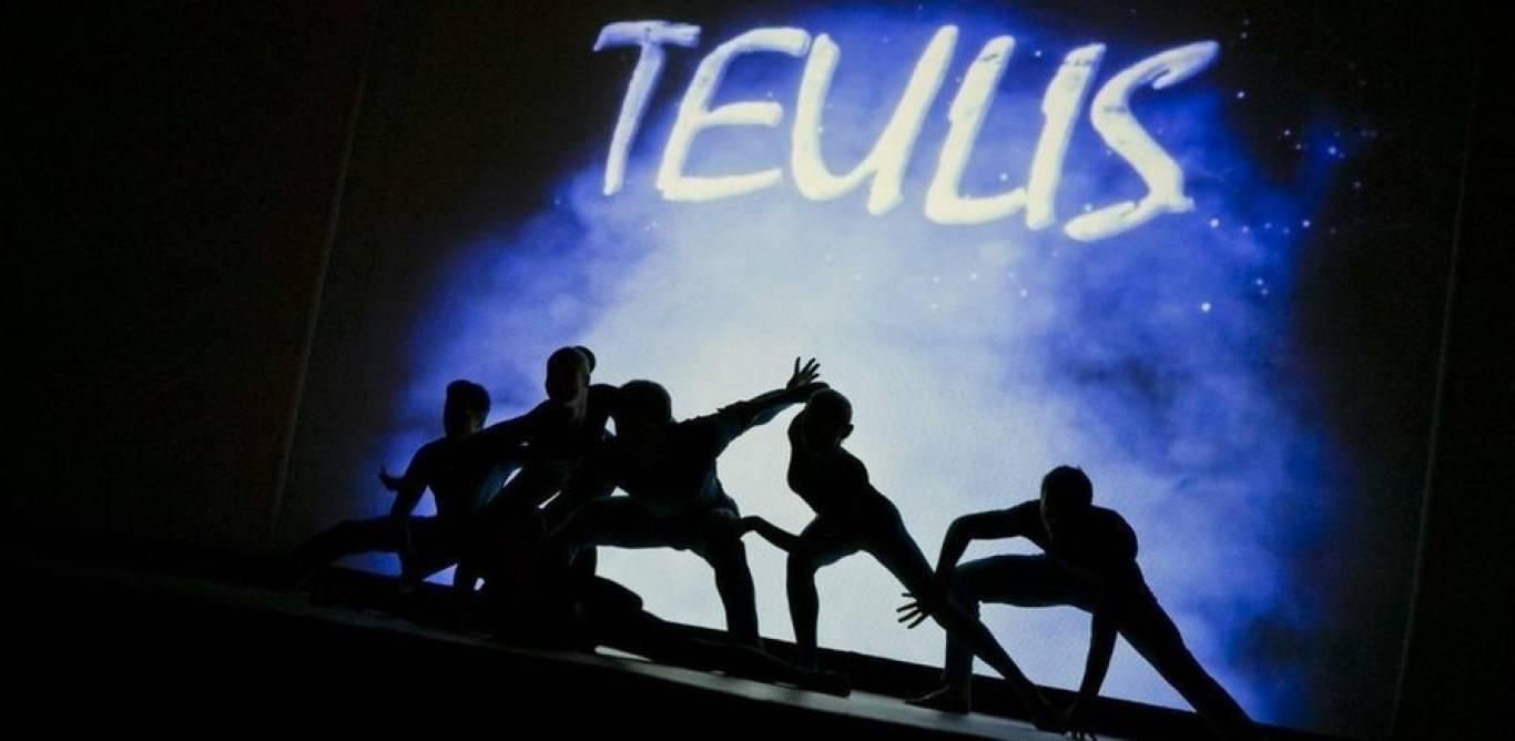 Спектакль Театр Теней Teulis