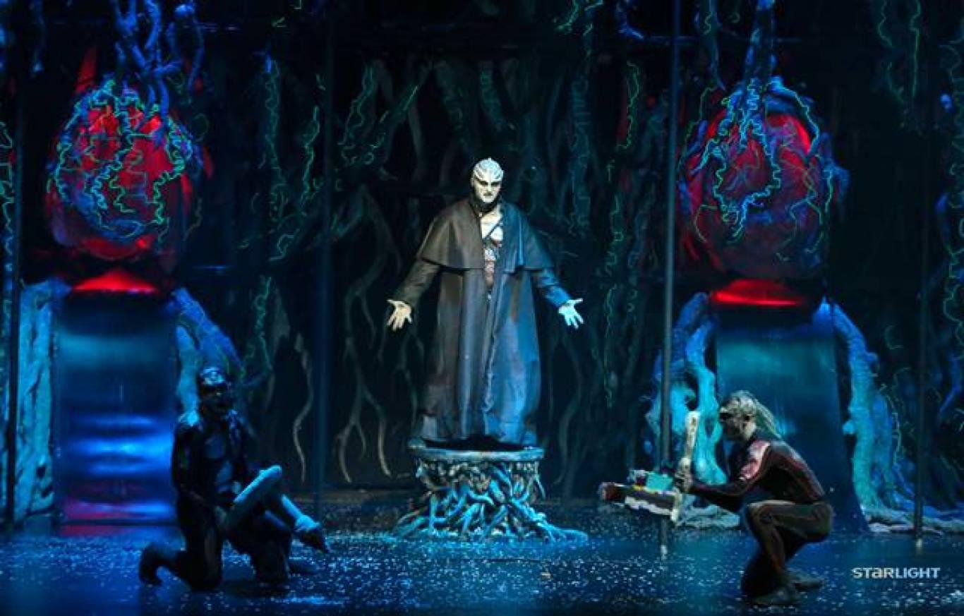 Різдвяне 3D-шоу «Вартові Мрій» у Житомирі