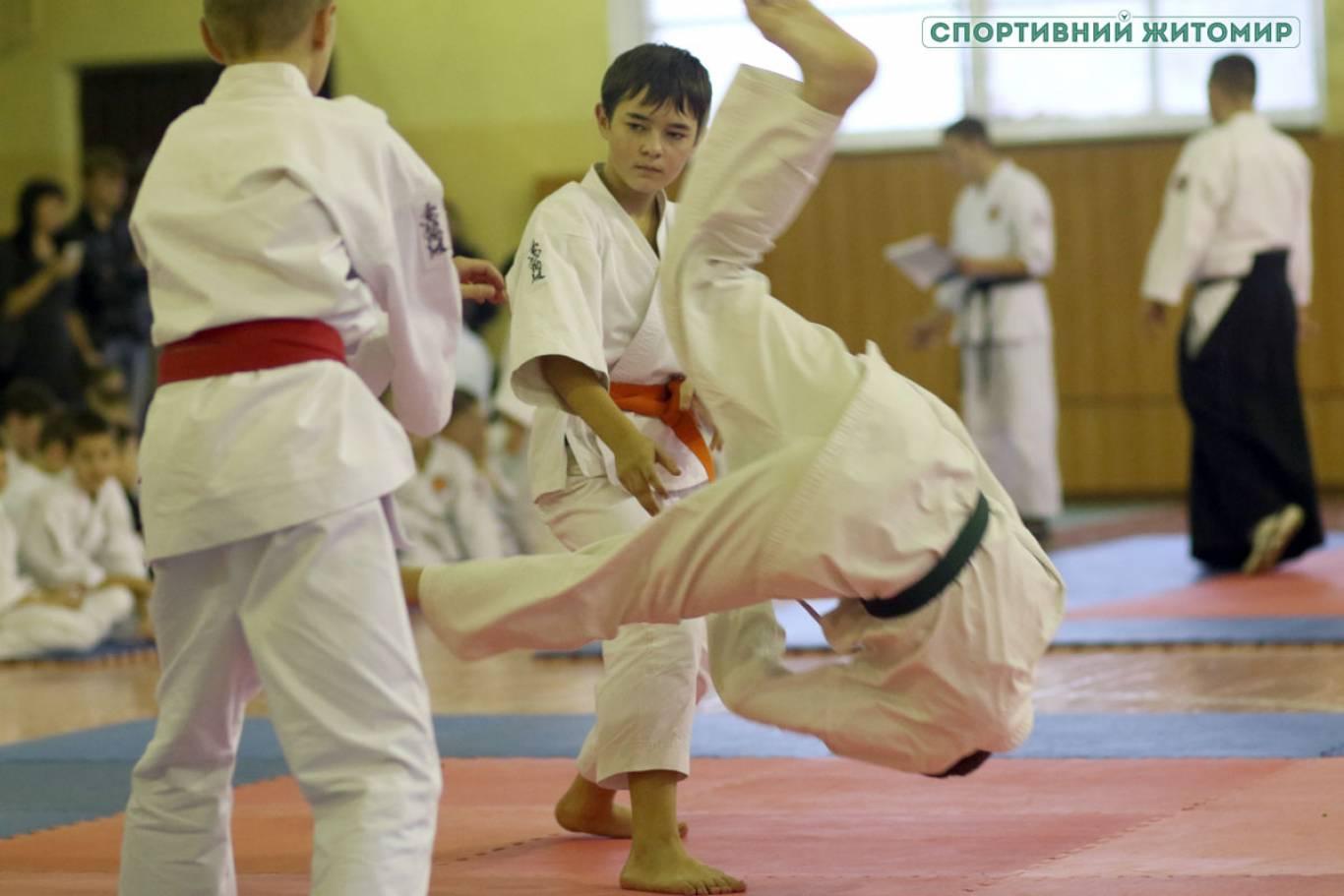 Чемпіонат України з айкідо
