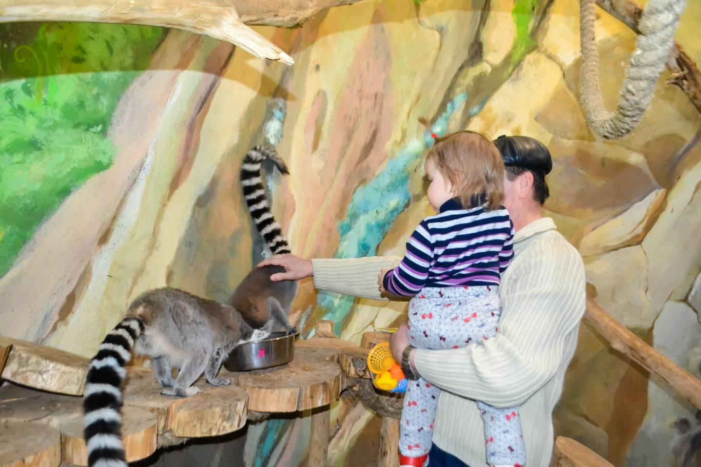 Відпочинок в контактному зоопарку Multizoo