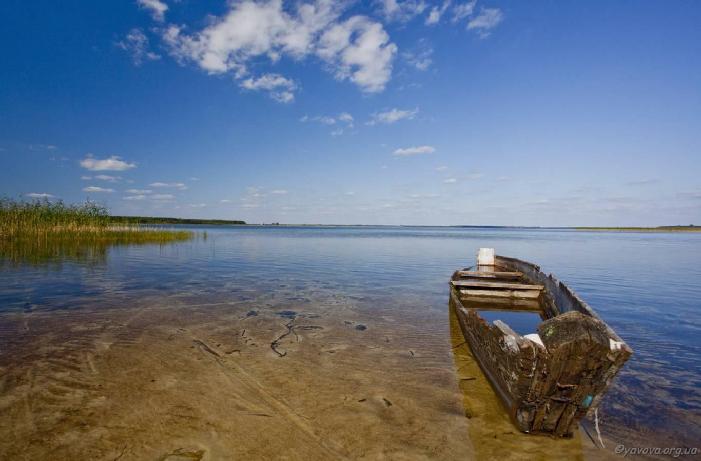 Луцьк-Шацькі озера-Брест-Біловезька Пуща