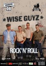 Концерт гурту «WiseGuyz»