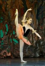 Театр опери і балету для дітей та юнацтва запрошує на балет «Дюймовочка»