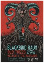 Концерт фольк-панк гурту з Санта-Круз Blackbird Raum