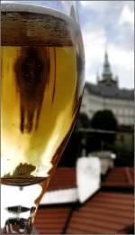 Пивной тур в Прагу