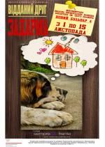 Виставка фотографій бездомних собак «Відданий друг – задарма»