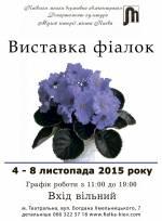 Виставка фіалок в Музеї історії Києва