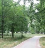 """Проект """"Київські парки"""": розпис входу парку """"Наталка"""" на Оболоні"""