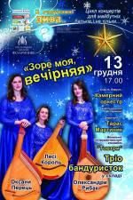 """Цікавий концерт """"Зоре моя, вечірняя"""""""
