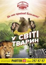 Міжнародна програма «У світі тварин» в Національному цирку України