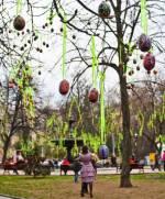 Святкування Великодня: киянам пропонують підготувати креативні проекти