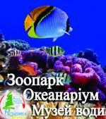 """Пізнавальний Київ: """"Океанаріум-Зоопарк-Музей води"""""""