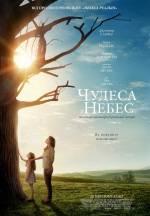 """Драма """"Чудеса з небес"""" у кінотеатрі ім. Коцюбинського"""