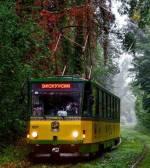 """Пуща-Водиця: літній романтичний трамвай """"Історії кохання під стукіт колес"""""""